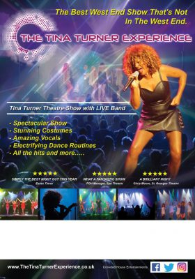 The Tina Turner Experience